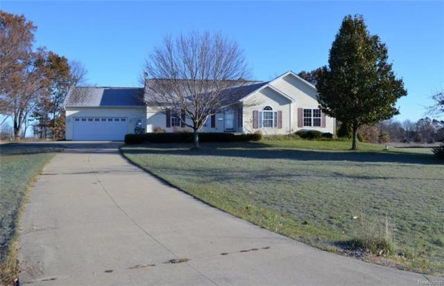11524 Saddle Drive, Conway Twp, MI 48836 (#217103829) :: The Buckley Jolley Real Estate Team