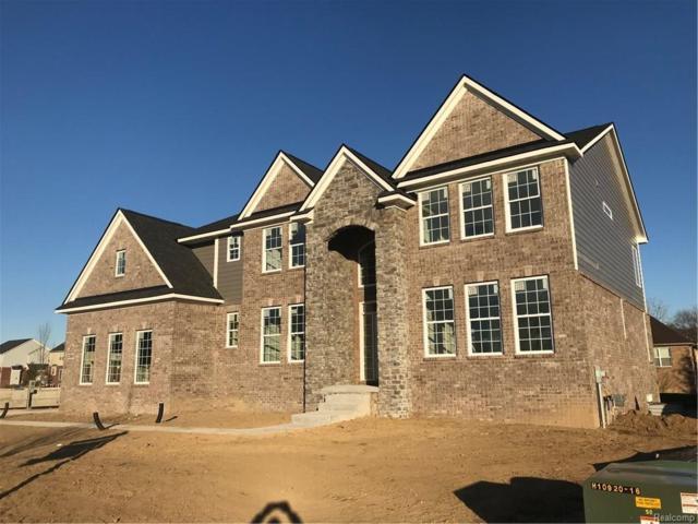 23686 Yerkes Drive, Lyon Twp, MI 48178 (#217106132) :: The Buckley Jolley Real Estate Team