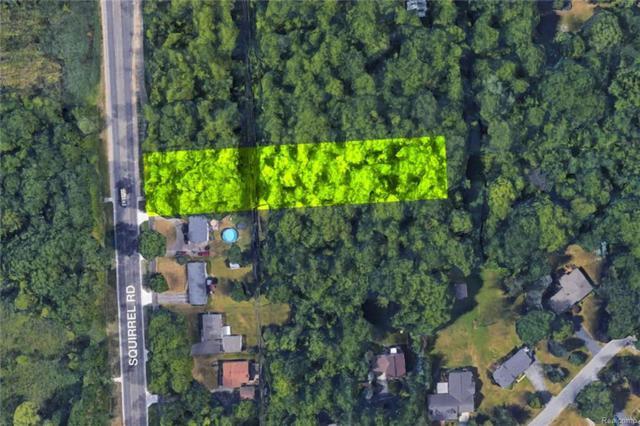 Vacant N Squirrel, Auburn Hills, MI 48326 (#217107699) :: Simon Thomas Homes