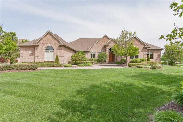 13095 Renaissance Drive, Shelby Twp, MI 48315 (#217108064) :: Simon Thomas Homes