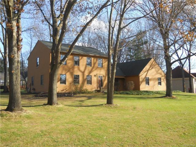 9111 Silver Pine Drive, Green Oak Twp, MI 48178 (#217108626) :: The Buckley Jolley Real Estate Team