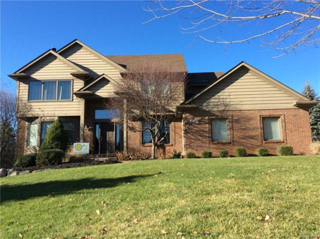 8129 Staghorn Trail, Independence Twp, MI 48348 (#217109220) :: The Buckley Jolley Real Estate Team