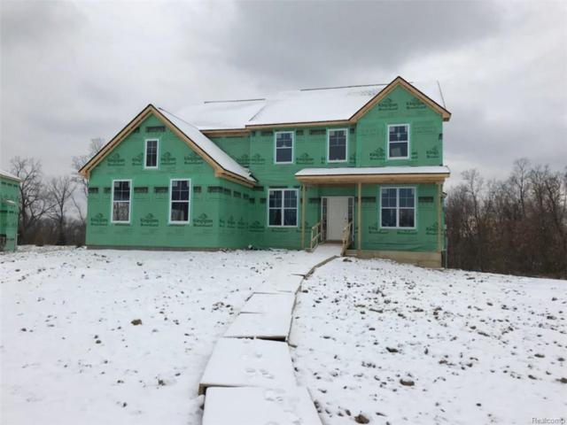 1575 Palatine Drive Drive, Oakland Twp, MI 48363 (#217109737) :: The Buckley Jolley Real Estate Team