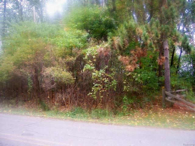 VACANT Farwell Lake, Hanover Twp, MI 49246 (#214105800) :: The Buckley Jolley Real Estate Team