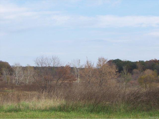 U 14 Iosco Ridge, Iosco Twp, MI 48137 (#25028862) :: The Buckley Jolley Real Estate Team