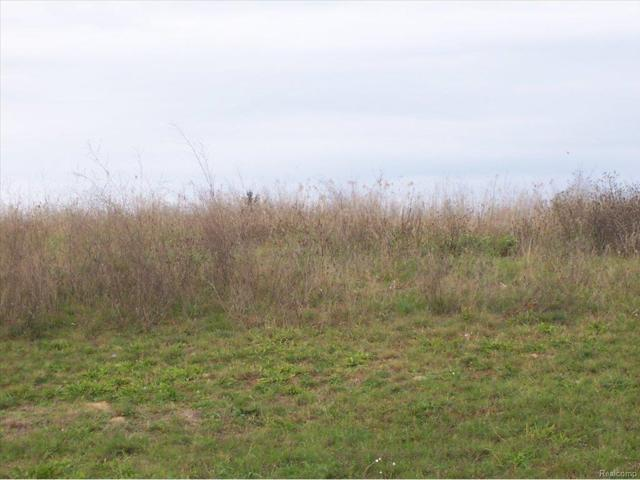 UNIT44 Iosco Ridge, Iosco Twp, MI 48137 (#25028938) :: The Buckley Jolley Real Estate Team