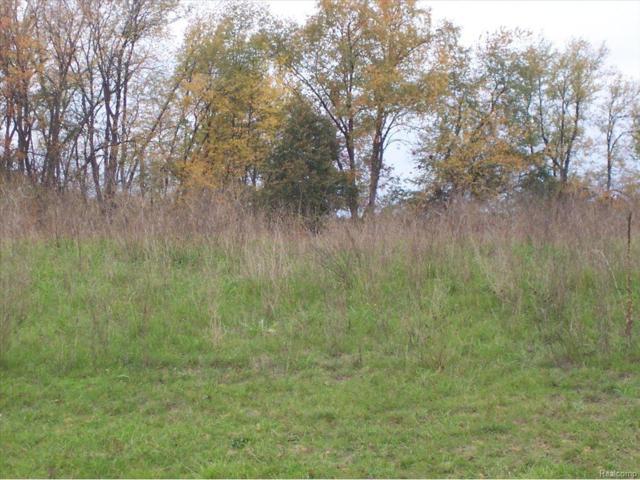 UNIT49 Iosco Ridge, Iosco Twp, MI 48137 (#25028944) :: The Buckley Jolley Real Estate Team
