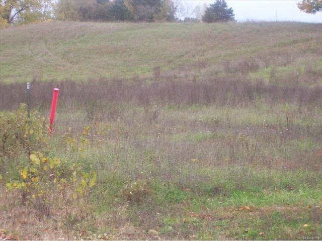 UNIT51 Iosco Ridge, Iosco Twp, MI 48137 (#25028946) :: The Buckley Jolley Real Estate Team