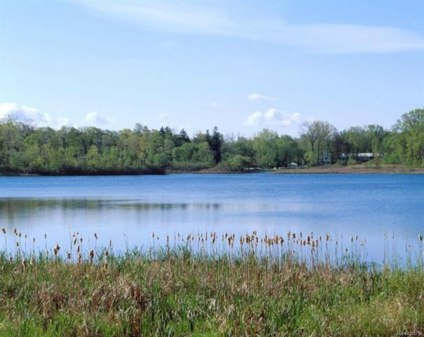 2633 Turtle Shores, Bloomfield Twp, MI 48302 (#216010274) :: GK Real Estate Team