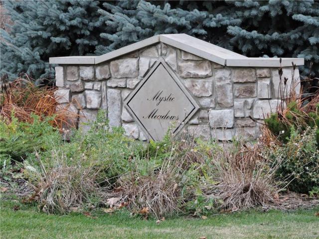 366 Granite Drive, Marion Twp, MI 48843 (MLS #216022759) :: The Toth Team