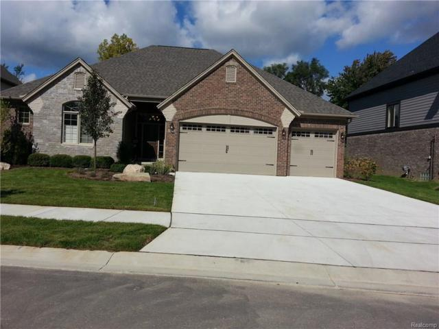 1981 Westridge Drive, Shelby Twp, MI 48316 (#216042966) :: Duneske Real Estate Advisors