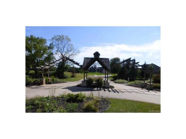 5036 Grande View Lane #17, Summit Twp, MI 49201 (MLS #543249878) :: The Toth Team