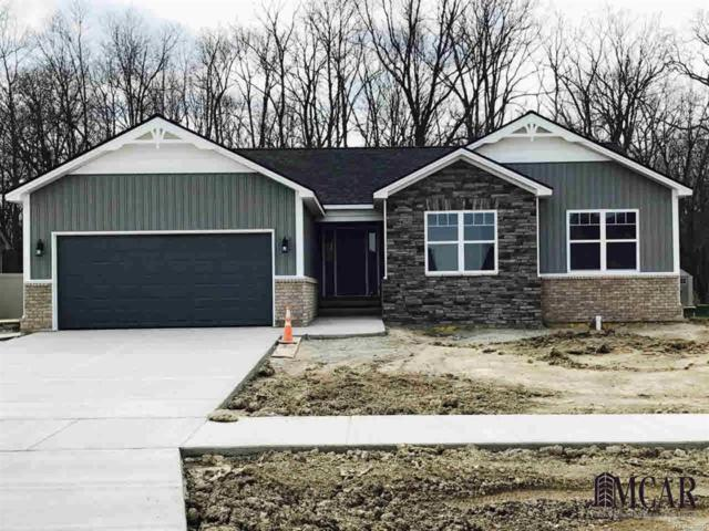 4119 Swanridge, Newport, MI 48166 (#57003450377) :: RE/MAX Vision