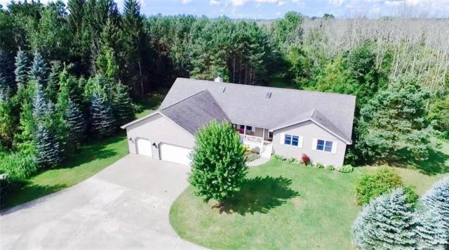 7431 Maple Grove Road, Delaware Twp, MI 48465 (MLS #217073400) :: The Toth Team