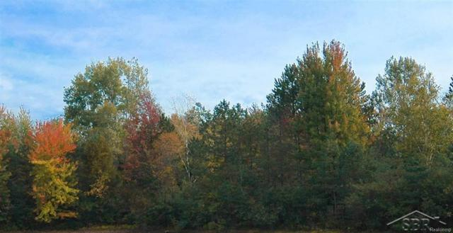 W Townline Rd 16, Mt Forest Twp, MI 48652 (MLS #61031333536) :: The Toth Team