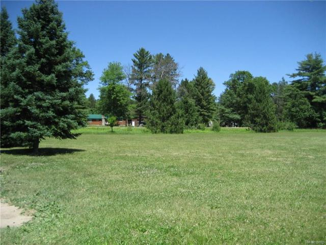 7250 Silsby Road, Au Sable Twp, MI 48653 (#217094919) :: RE/MAX Classic