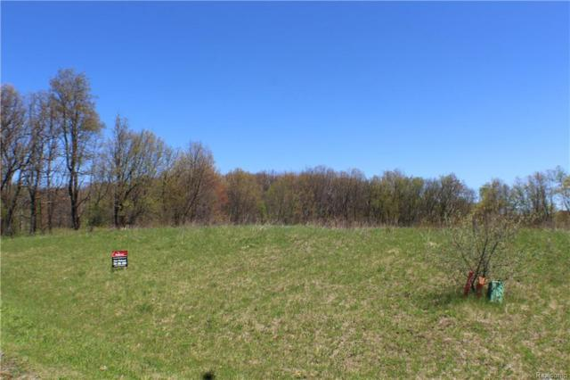 12753 Meadow View Cir, Groveland Twp, MI 48422 (#217095406) :: RE/MAX Classic