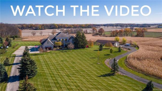 4335 Diuble Road, Lodi Twp, MI 48103 (#217102474) :: RE/MAX Classic