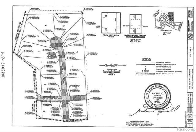 312 Samantha Way, Rose Twp, MI 48350 (#217102996) :: The Alex Nugent Team   Real Estate One