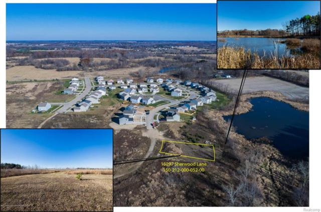 15297 Sherwood Lane, Watertown Twp, MI 48906 (#630000222031) :: Duneske Real Estate Advisors