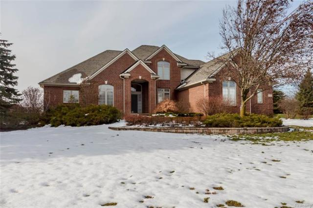 11571 Willow Wood Lane, Plymouth, MI 48170 (#217111028) :: RE/MAX Classic