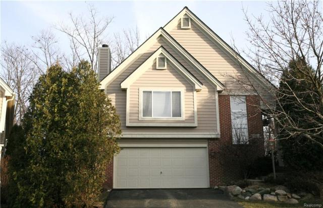 7346 Chipmunk Hollow, Independence Twp, MI 48346 (#217112356) :: RE/MAX Classic