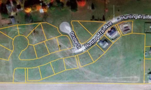 Bluebird Ct, QUINCY VLLG, MI 49082 (#53018000344) :: Duneske Real Estate Advisors
