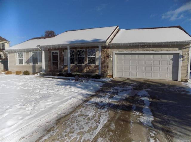 808 Illinois Drive, Tecumseh, MI 49286 (#543253823) :: The Buckley Jolley Real Estate Team