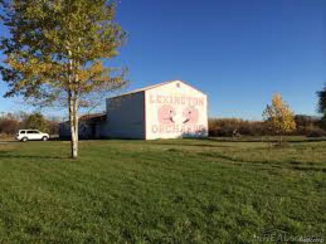6934 Peck Rd, Lexington, MI 48450 (#58031337846) :: Simon Thomas Homes