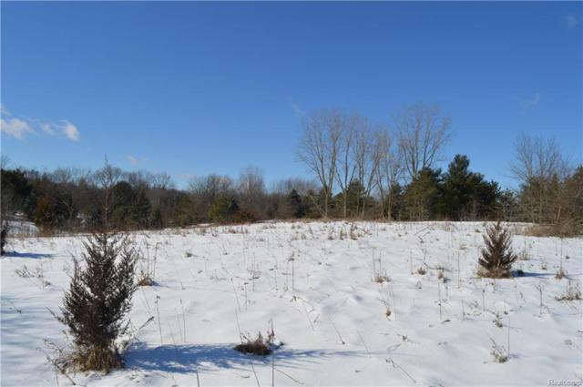 VACANT Childs Lake Road, Milford Twp, MI 48381 (#218003218) :: RE/MAX Classic