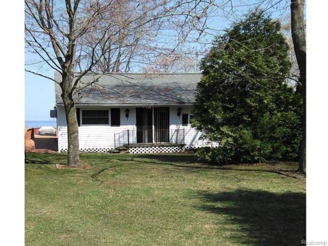 1859 Lakeshore Rd S, Sanilac Twp, MI 48419 (#218003809) :: Metro Detroit Realty Team | eXp Realty LLC