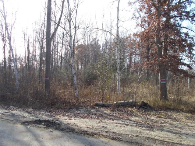0000 Coldwater Lot #2 Road, Oregon Twp, MI 48446 (#218004673) :: RE/MAX Classic