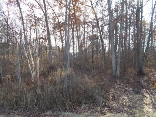 0000 Coldwater Lot #3 Road, Oregon Twp, MI 48446 (#218004674) :: RE/MAX Classic