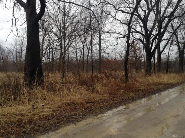 15000 Winter Road, Woodstock Twp, MI 49220 (MLS #218005184) :: The Toth Team