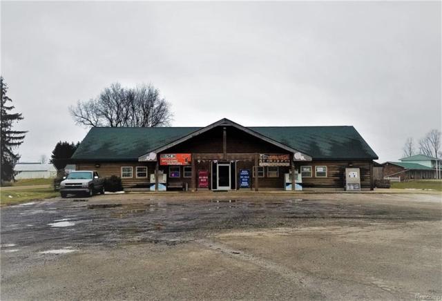 13100 Territorial Road, Waterloo Twp, MI 49285 (#218006264) :: Metro Detroit Realty Team | eXp Realty LLC