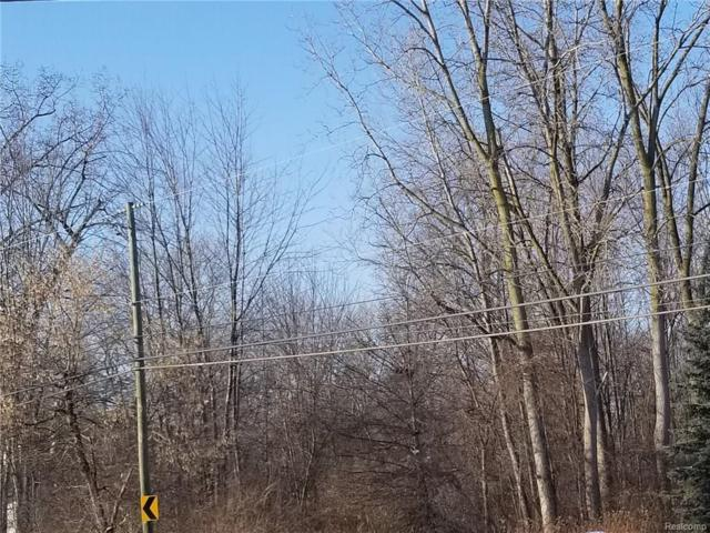 00000 Sibley Road, Brownstown Twp, MI 48174 (#218007774) :: RE/MAX Classic
