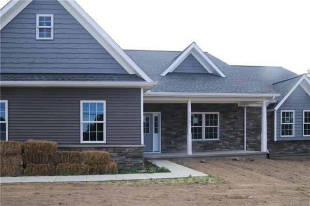 3181 W Coon Lake, Marion Twp, MI 48843 (#218008008) :: The Buckley Jolley Real Estate Team