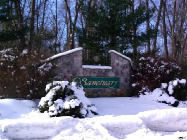 Sanctuary Dr, Leoni, MI 49201 (#55201800315) :: Metro Detroit Realty Team | eXp Realty LLC