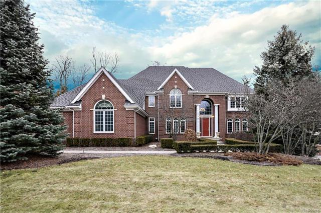 17583 Stonebrook Drive, Northville Twp, MI 48168 (MLS #218008514) :: The Toth Team
