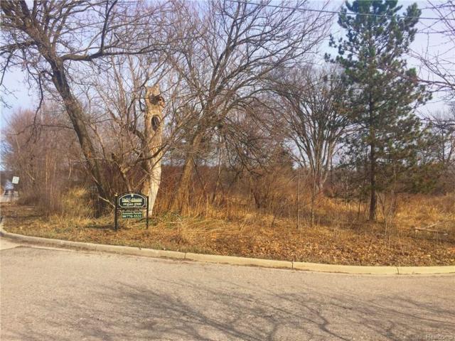 1646 N Milford Road, Milford Twp, MI 48381 (#218008874) :: Metro Detroit Realty Team | eXp Realty LLC