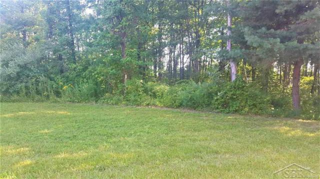 1 Bunny Trail, Saginaw Twp, MI 48638 (#61031339497) :: RE/MAX Vision