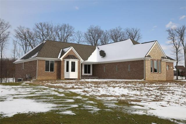 8671 Giovanni Court, Hartland Twp, MI 48855 (#218009494) :: The Buckley Jolley Real Estate Team