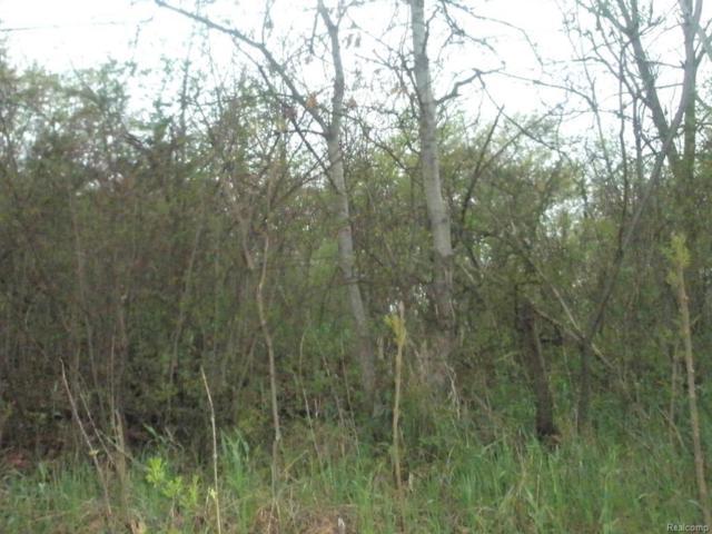VL Andersonville, Springfield Twp, MI 48346 (#218009684) :: RE/MAX Classic