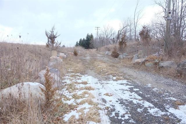 13230 E Michigan 119 Acres Avenue, Bridgewater Twp, MI 49236 (#543254210) :: RE/MAX Nexus