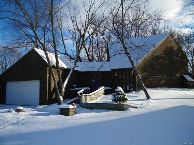 4811 Apache Trail, Oregon Twp, MI 48421 (#218010184) :: The Buckley Jolley Real Estate Team