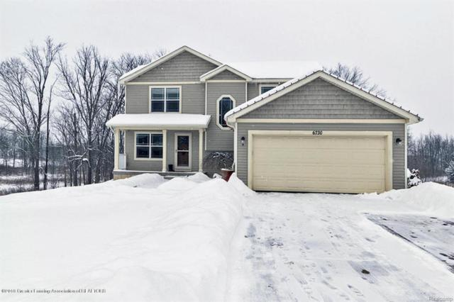 6730 Thunder Lane, Watertown Twp, MI 48906 (MLS #630000223357) :: The Toth Team
