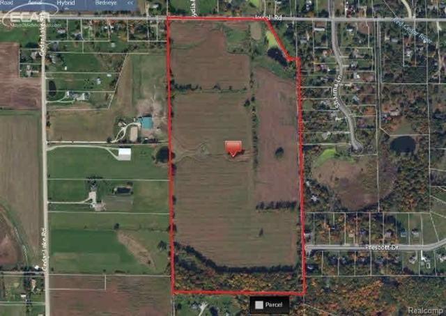 3800 Jewell Road, Howell, MI 48843 (#218011317) :: The Buckley Jolley Real Estate Team
