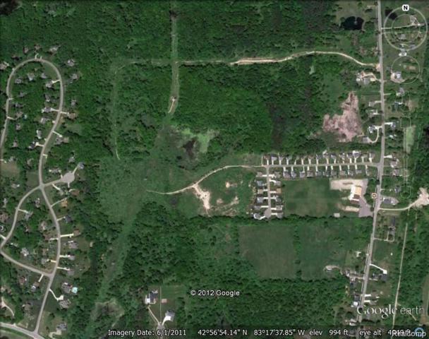 0 Metamora Road, Metamora Twp, MI 48455 (#218011665) :: RE/MAX Classic