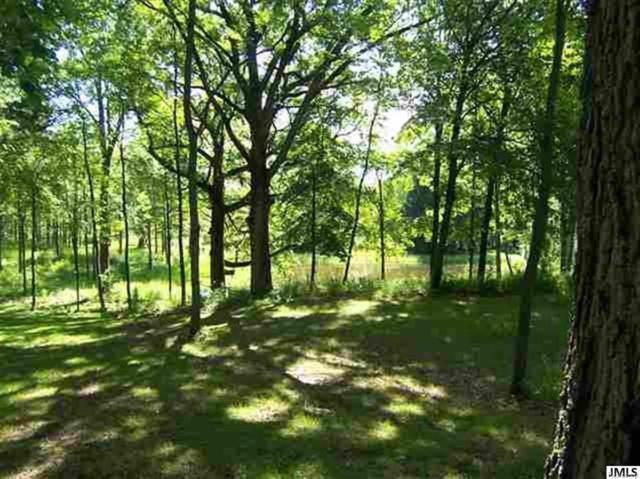 Cedar Glen Dr, Cambridge, MI 49230 (#55201800453) :: Simon Thomas Homes