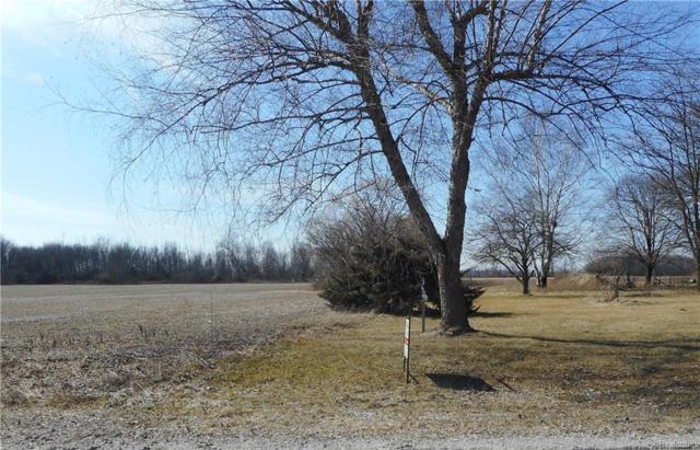 7.8 acres Kronner Road, Columbus Twp, MI 48063 (#218012519) :: Metro Detroit Realty Team | eXp Realty LLC